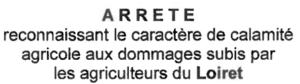 Arrêté reconnaissant le caractère de calamité agricole aux dommages subis par les agriculteurs du Loiret
