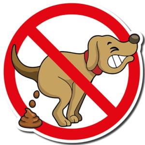 Arrêté Municipal permanent interdisant les déjections canines sur le domaine public communal
